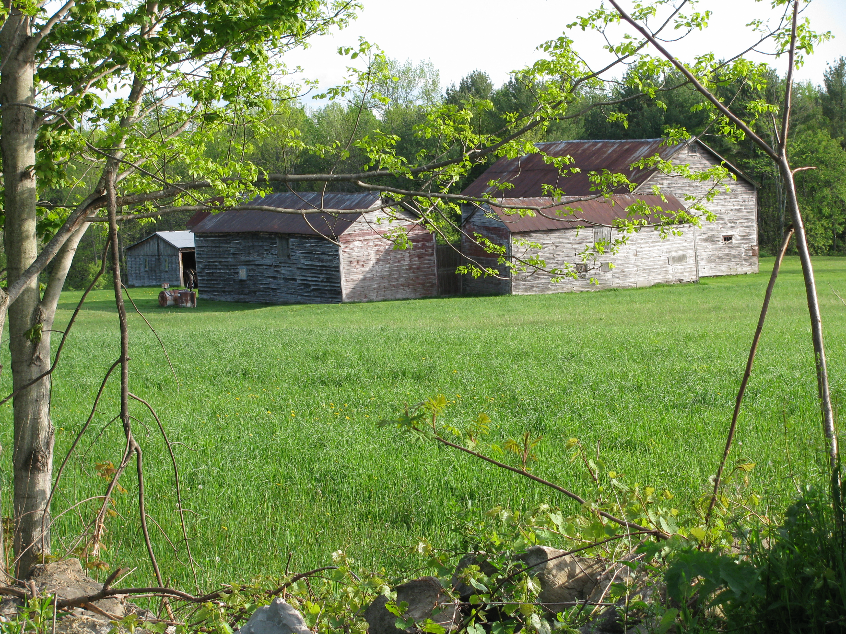 barn-4.jpg